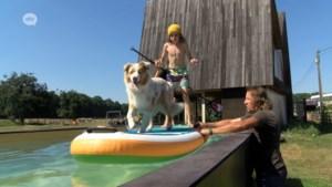 Antwerpenaar bouwt 'zwevend zwembad' van 18 meter lang