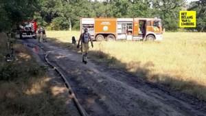 Op het nippertje: vijf korpsen kunnen brand nét voor de bosrand stoppen