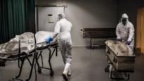 Al meer dan 730.000 mensen overleden aan coronavirus, België voert trieste ranglijst aan