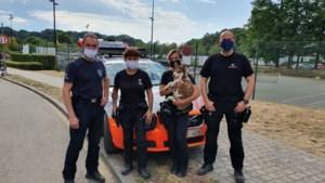 Federale politie redt puppy uit snikhete koffer van 50 graden