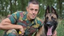 """Defensie wil honden inzetten bij opsporing coronavirus: """"Tegen december 12 ploegen"""""""