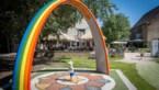 <B>Vijf maal terras met speeltuin: voor speelvogels en terrasliefhebbers</B>