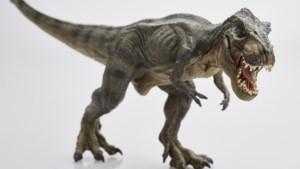Nieuwe soort dino ontdekt en hij is familie van de T-rex