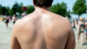 Hart gaat extra pompen en minder honger: dit doet ons lichaam om af te koelen