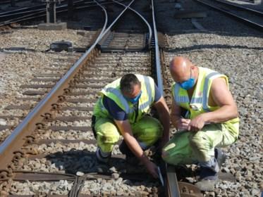 Geen treinen tussen Landen en Hasselt door schade aan bovenleiding