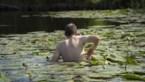 Waarom wildzwemmen in plassen en kanalen echt wel gevaarlijk is