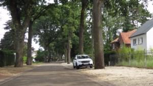"""Politie legt feestje stil in Lanaken: """"In Nederland zijn de regels anders"""""""