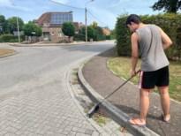 Genk roept inwoners op zelf rioolputjes zuiver te maken