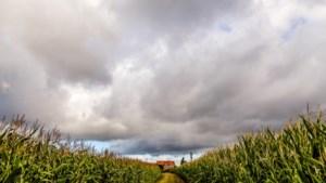 """Code geel in Limburg voor storm Francis: """"Veranker trampoline en ruim leeg zwembad op"""""""
