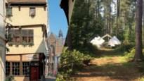 Op verkenning in Diest, de Vlaams-Brabantse stad waar muziek in zit