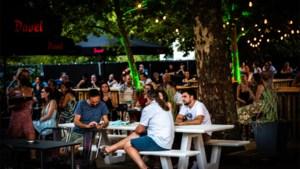 Van Parklife XL in Hasselt tot pop-up tussen de maïs: onze tien zomertips
