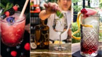 Vijf maal cocktails: van eigen creaties tot echte klassiekers