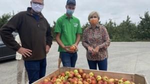Tussen de 5.000 en 7.000 studenten helpen bij fruitpluk, net als minister Crevits