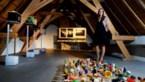 Laatste expo in Hasseltse begijnhofhuisjes toont 'het leven na corona'