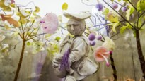 Van expo Tim Walker op kindermaat tot cornflakesbar in Hasselt: onze uittips