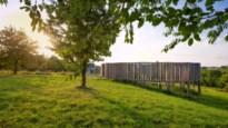 FIETSEN. Een fruitige lus door het Toscane van Limburg
