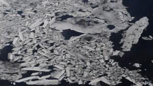 Nooit minder ijs in Beringzee in laatste 5.500 jaar, kettingreactie negatieve gevolgen mogelijk