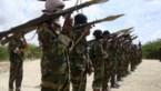 Dorpsbewoners bevechten terroristen in Somalië, 16 strijders omgekomen
