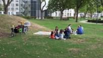 Laatste Picknick in het Park kan rekenen op heel wat zonnestralen
