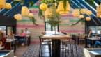 Gerechtjes delen in Limburg: dit zijn vijf lekkere gastrobars