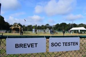 Hondenschool De Kriekel houdt wedstrijdweekend en Kriekelcup