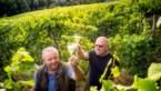 Zin in een wijntje? Dit is de koning van de bubbels in Limburg