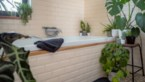 Zo bouw je een jungle in je badkamer