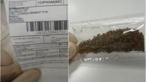 """FAVV waarschuwt voor ongewenste zaadpakketten: """"Zaai deze niet"""""""