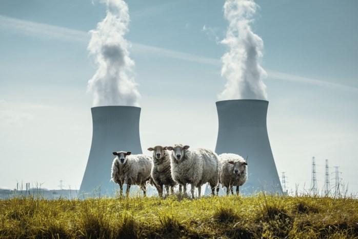 Bond Beter Leefmilieu nuanceert studie over goedkopere kerncentrales
