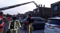 Brandende horzel vliegt in spouwmuur en veroorzaakt dakbrand in Dilsen