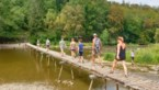 GETEST. Dit zijn de mooiste wandelbruggen in Vresse-sur-Semois