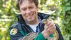 COLUMN. Natuurhulpcentrum laat roofvogels vrij in Hasselt en Genk