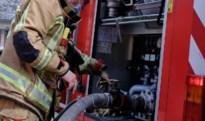 Twee tuinhuizen uitgebrand in Koninksem