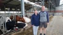 Alkens melkveebedrijf zet koeienmest om in elektriciteit