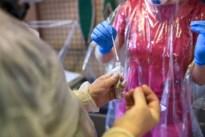 Acht leerlingen in quarantaine bij WICO in Lommel na besmetting leerling