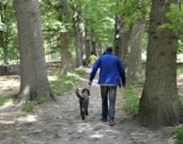 Bubbelwandeling voor hond en baasje