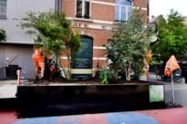 Handelaars niet opgezet met pop-upparkjes in Hasseltse binnenstad