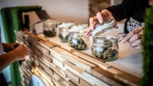 Ook tweede cannabiswinkel in Hasselt moet sluiten