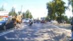 Genieten op je motor, tot er plots een paard opduikt met veel verkeersagressie