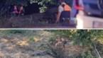 Zwaar ongeval aan werken op Universiteitslaan: man overleden, vrouw kritiek