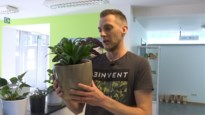 Asielcentrum voor planten opent deuren in Genk