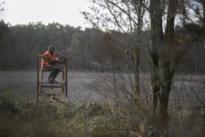 Professioneel jagersteam moet everzwijnenprobleem aanpakken