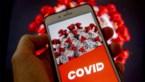 Twee derde Vlamingen wil corona-app gebruiken