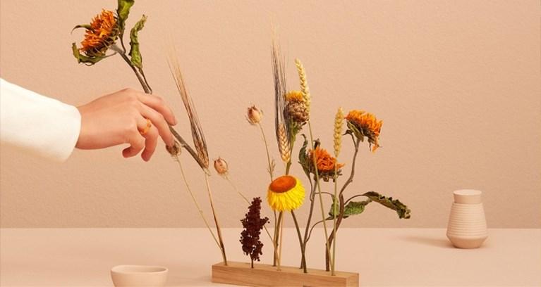 TIPS. Ode aan de zonnebloemen en bruiswater met een vleugje alcohol