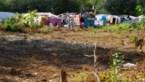 Eén op de drie Roma in ons land kan niet voorzien in basisbehoeften