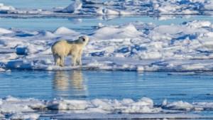 Min 69,9 graden op Groenland, kouderecord van 30 jaar geleden duikt nu op