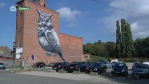Projectontwikkelaar belooft Hasselts grafitti-kunstwerk te integreren in nieuw project
