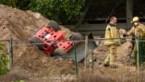 Arbeider (49) overleden nadat hij onder bobcat terechtkomt in Millen