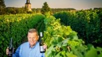 Zeker proeven: deze wijnen uit Heers kregen twee keer goud