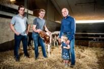Melkveehouder Dilsen-Stokkem legt uit waarom hij wil uitbreiden